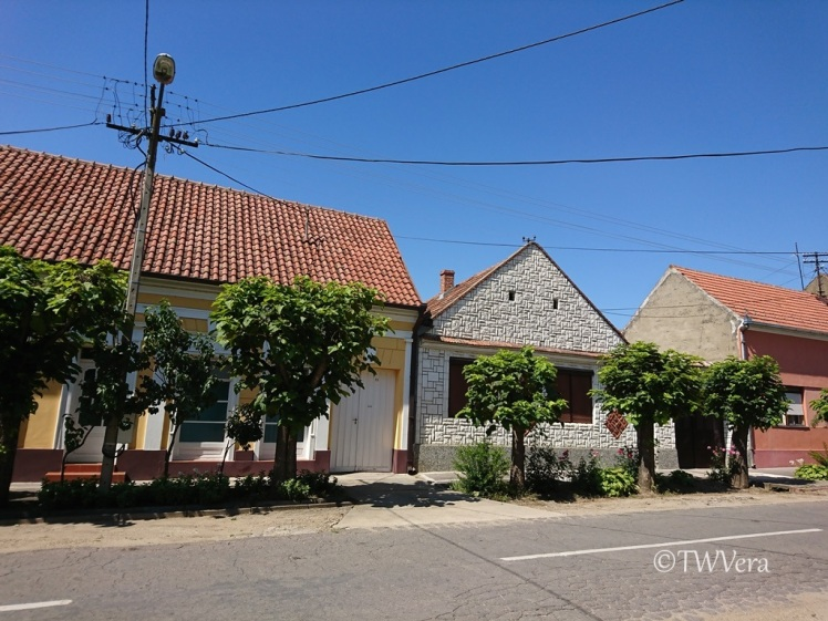Bela Crkva street, Vojvodina, Serbia